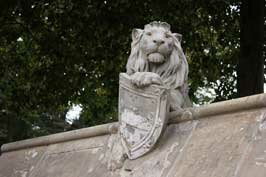 Lion on animal wall